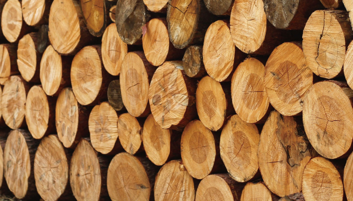 スモリの家 木材