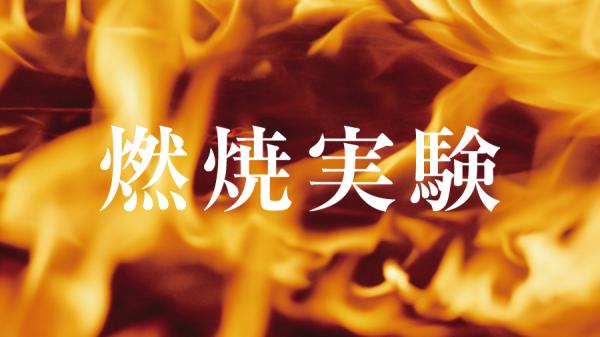 燃えにくい断熱材